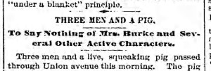 Bklyn Daily Eagle, 21 November 1892.